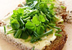 Главные витамины и минералы, способствующие ускорению обмена веществ и снижению веса