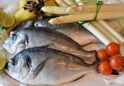 Место рыбы в здоровом питании