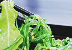 Съедобные водоросли. Чем они полезны?