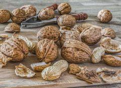 Орехи. Существует ли самый полезный орех?