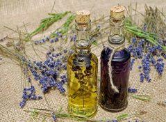 Биологическая роль витамина Е